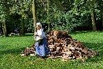 Galerie juamer16_P1420062.jpg anzeigen.